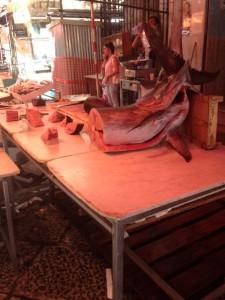 palermo fish market